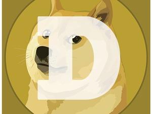 50.000 DogeCoin te koop
